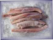 Jersey Fresh Fish - Rock Salmon - click here to enlarge